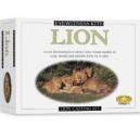 Eyewitness Kit: Lion