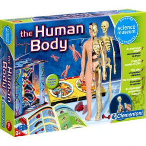 Clementoni Sci Museum: The Human Body